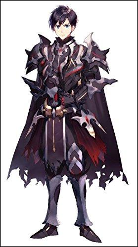 暗黒騎士の俺ですが最強の聖騎士をめざします2